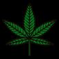 cannabisleaf600.png